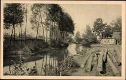 Postcard Schlepzig Landkreis Dahme Spreewald, Baumstämme, Fluss, Gebäude