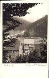 Foto Ak Sieber Herzberg am Harz in Niedersachsen, Häuser, Weg, Wald