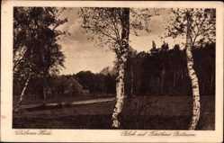 Postcard Bad Düben an der Mulde Sachsen, Forsthaus Battaune, Dübener Heide