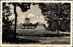 Postcard Bad Zwischenahn Kreis Ammerland, Ammerlandschaft, Windmühle
