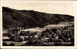 Postcard Zelking Matzleinsdorf Niederösterreich, Sommerfrische, Panorama