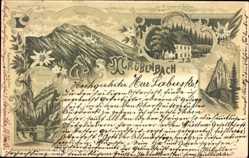 Litho Trübenbach Niederösterreich, Oetscher, Sommerer's Gasthaus, Thormäuer