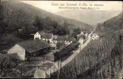 Postcard Sulzmatt bei Gebweiler Haut Rhin, Mienralwasserquelle Nessel, Brun und Co.