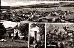 Postcard Mengerschied Rheinland Pfalz, Ferienheim Karl Pfaff, Alteburg, Wild