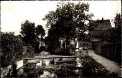 Postcard Dassel in Niedersachsen, Teichpartie, Holzsteg, Gebäude