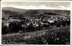 Postcard Duszniki Zdrój Bad Reinerz Schlesien, Panorama der Stadt, Feld