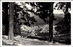 Postcard Katzhütte Oelze im Schwarzatal, Blick vom Aussichtspunkt zum Ort, Bank