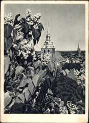 Postcard Lüneburg in Niedersachsen, Blick auf die Stadt, Pflanze, Turm