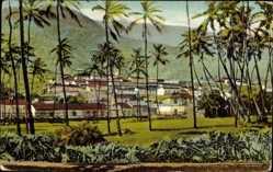 Postcard Cerro de Jesus Maiquetia Venezuela, Panorama der Siedlung, Palmen