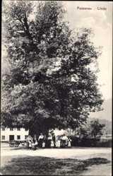 Postcard Faistenau Salzburg, Ansicht der großen Linde, Anwohner