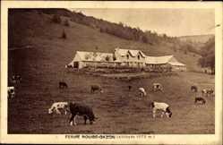 Postcard Saint Maurice sur Moselle Vosges, Ferme Rouge Gazon, Rinder auf Weide
