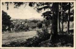 Postcard Stiege Oberharz am Brocken, Blick auf den Ort, Felder, Vegetation