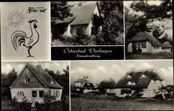 Postcard Ostseebad Dierhagen, Strandsiedlung, Haus Früh auf, Hahn, Sonne
