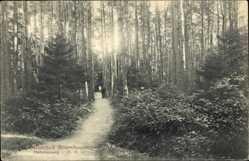 Postcard Brunshaupten Ostseebad Kühlungsborn im Kreis Rostock, Helenenweg