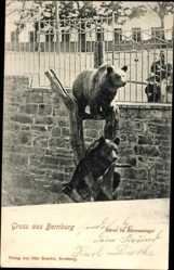 Postcard Bernburg an der Saale Salzlandkreis, Bären im Bärenzwinger