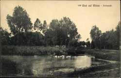 Postcard Wiek auf der Insel Rügen, Dorfansicht, Teichpartie, Straße, Wittow