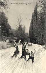 Postcard Blankenburg am Harz, Schlittenfahrer auf der Rodelbahn