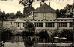 Postcard Heilbad Heiligenstadt, Kneippbad mit Schwanenteich, Gebäude, Schwäne