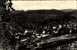 Postcard Einsiedel Chemnitz Sachsen, Blick auf den Ort, Wald, Häuser