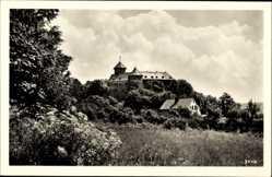 Postcard Oelsnitz Vogtland, Blick auf das Schloss Voigtsberg, Vegetation