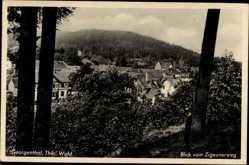 Postcard Georgenthal im Tal der Apfelstädt Thüringen, Blick vom Zigeunerweg