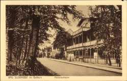 Ak Bad Suderode im Harz, Straßenpartie am Helenenheim