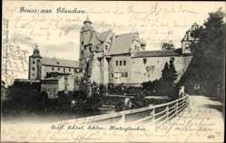 Postcard Glauchau Sachsen, Gräflich Schönb. Schloß, Hinterglauchau, Straße