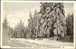 Postcard Steinbach Johanngeorgenstadt im Erzgebirge Sachsen,Kammweg Kleiner Kranichsee