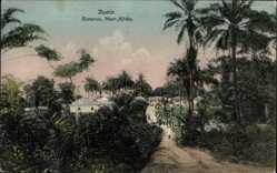 Postcard Duala Kamerun, Straßenpartie, Palmen, Einheimische, Gebäude