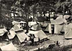 Ak Ostseebad Baabe auf Rügen, Partie am Zeltplatz, Wald, Camping