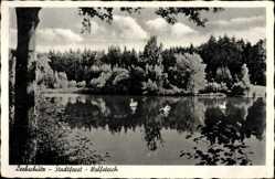 Postcard Głubczyce Leobschütz Schlesien, Stadtforst,Waldhaus Wolfsteich, Josef Piwowar