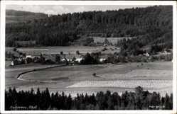 Foto Ak Reichenau Waidhaus in der Oberpfalz Bayern, Blick auf den Ort, Felder