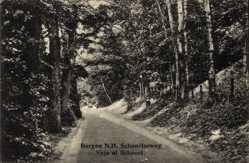 Postcard Bergen Nordholland Niederlande, Schoorlseweg, Straßenpartie