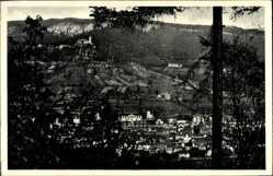 Postcard Blankenburg am Harz, Totalansicht, Burg Greifenstein, Waldhaus Tanneck