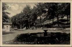 Postcard Bad Suderode Quedlinburg im Harz, Partie im Kurpark