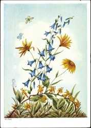 Künstler Ak Zahl, H., Primus 2620, Glockenblumen