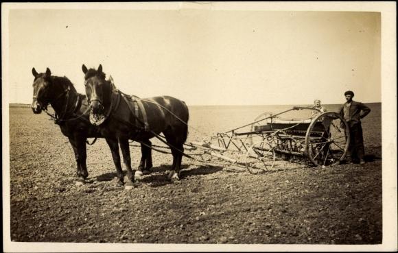 foto ansichtskarte postkarte landwirtschaft bauern ackerpflug pferde. Black Bedroom Furniture Sets. Home Design Ideas