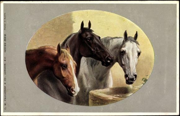 passepartout k nstler ansichtskarte postkarte drei pferde an der tr nke braun schwarz wei. Black Bedroom Furniture Sets. Home Design Ideas