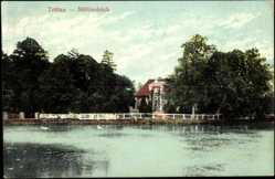 Postcard Trittau Schleswig Holstein, Partie am Mühlenteich