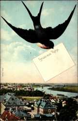 Postcard Riesa Sachsen, Blick über die Stadt hinweg, Panorama, Schwalbe