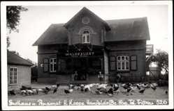 Foto Ak Hamfelde, Gasthaus und Pensionat, Hans Koops, Waldeslust