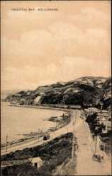 Ansichtskarte / Postkarte Wellington Neuseeland, general view of the Oriental Bay