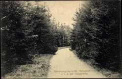 Postcard Großhansdorf, Partie beim Genesungsheim, L. V. A. der Hansestädte