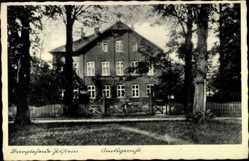 Postcard Bargteheide im Kreis Stormarn, Blick zum Amtsgericht, Bäume