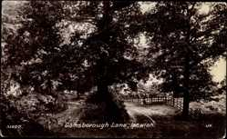 Postcard Ipswich East of England, Gamsborough Lane, Waldweg