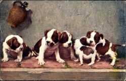 Künstler Ak Jobst, Die Stammhalter, Bulldoggenwelpen, Hunde