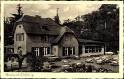 Ak Sulęcin Zielenzig Ostbrandenburg, Restaurant, Inh. G. Nitter