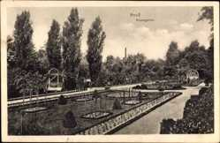 Postcard Neuss in Nordrhein Westfalen, Partie im Rosengarten, Blumenbeete, Weg