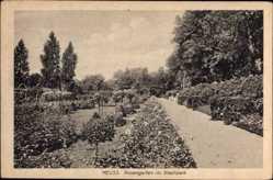 Postcard Neuss in Nordrhein Westfalen, Partie im Rosengarten im Stadtpark, Weg