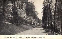 Postcard Phoenixville Pennsylvania USA, Drive at Valley Forge